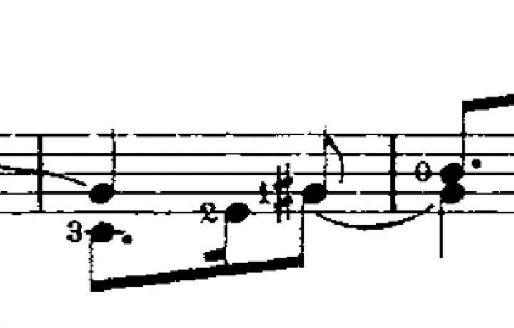 A Twisted Pearl in BWV 995 image
